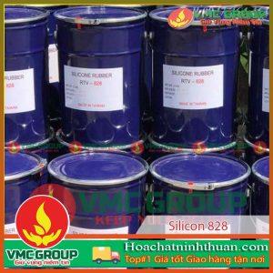 silicone-858-tao-khuon-hoa-tiet-hcnt